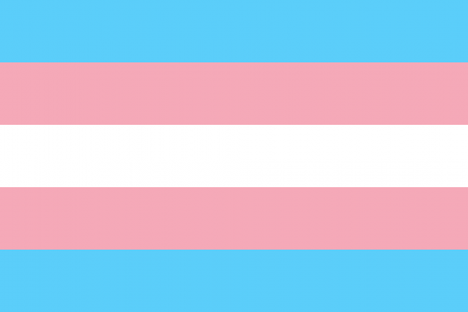 The trans flag