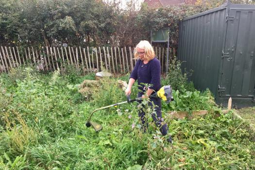Volunteer strimming at our allotment